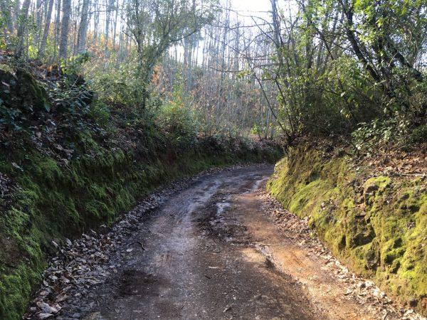 senderos de Constantina