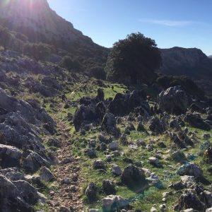 Trekking del Boyar a Benaocaz