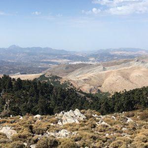 Pico Torrecilla